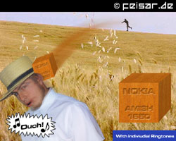 Nokia Amish 1650 Ouch! With individual Ringtones